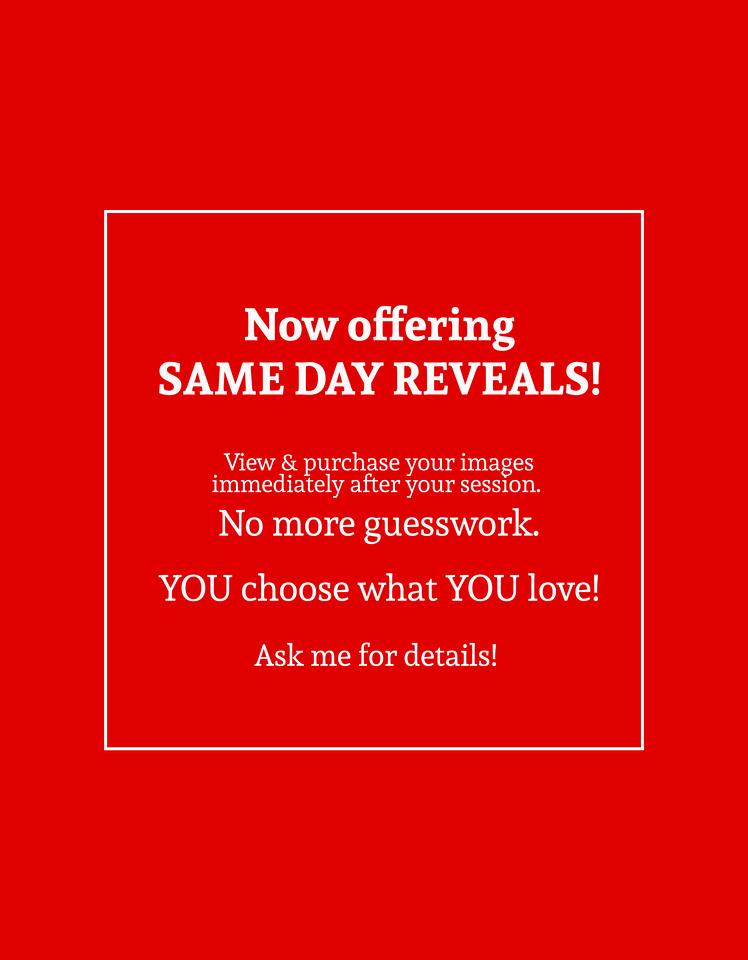 same day reveals
